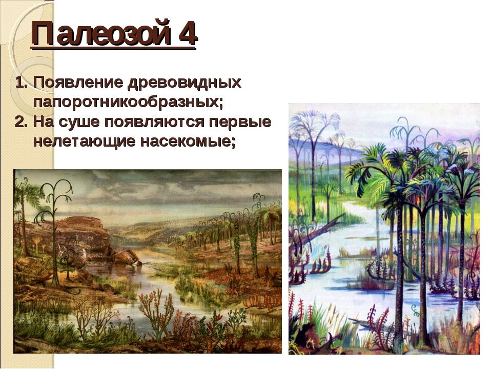 Палеозой 4 Появление древовидных папоротникообразных; На суше появляются перв...