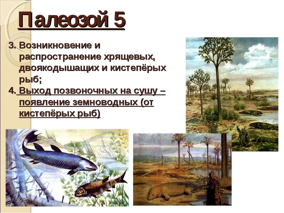Палеозой 5 3. Возникновение и распространение хрящевых, двоякодышащих и кисте...