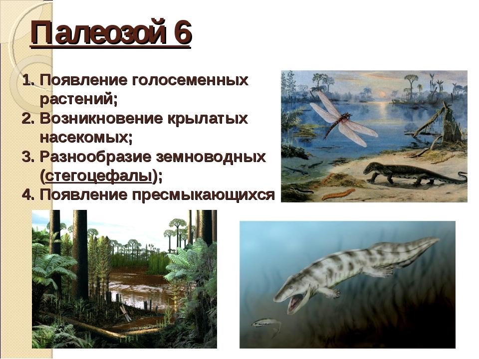 Палеозой 6 Появление голосеменных растений; Возникновение крылатых насекомых;...