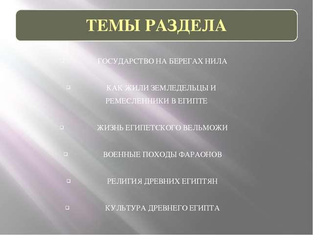 ГОСУДАРСТВО НА БЕРЕГАХ НИЛА КАК ЖИЛИ ЗЕМЛЕДЕЛЬЦЫ И РЕМЕСЛЕННИКИ В ЕГИПТЕ ЖИЗН...