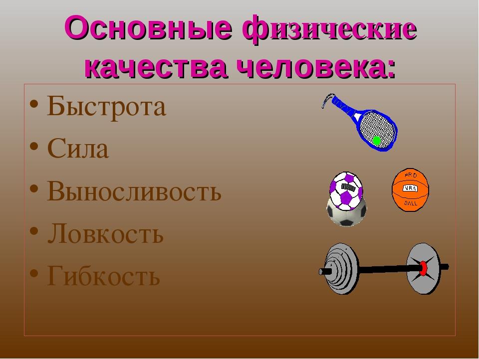 Основные физические качества человека: Быстрота Сила Выносливость Ловкость Ги...