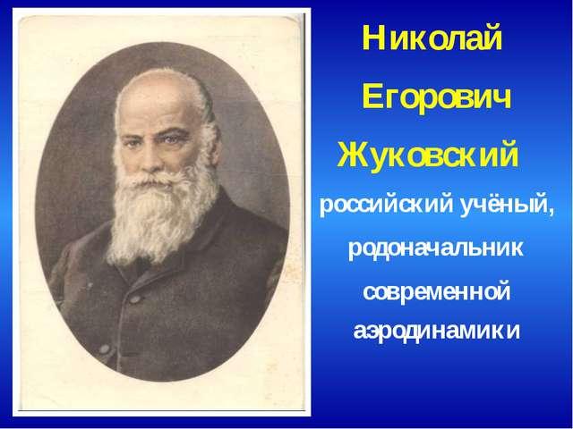 Николай Егорович Жуковский российский учёный, родоначальник современной аэрод...