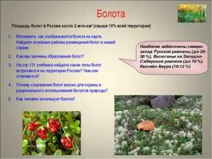 Болота Площадь болот в России около 2 млн.км2 (свыше 10% всей территории) Всп