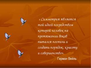 « Симметрия является той идеей посредством которой человек на протяжении век