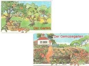 Der Gemüsegarten Der Garten