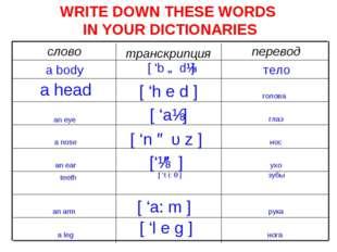 WRITE DOWN THESE WORDS IN YOUR DICTIONARIES перевод транскрипция слово тело [
