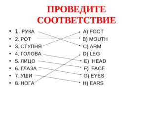 ПРОВЕДИТЕ СООТВЕТСТВИЕ 1. РУКА A) FOOT 2. РОТ B) MOUTH 3. СТУПНЯ С) ARM 4. ГО