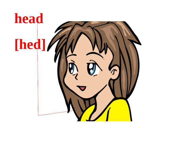 head [hed]