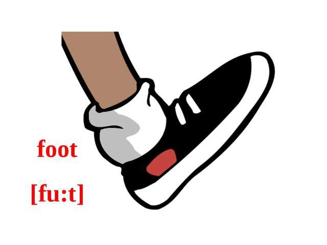 foot [fu:t]