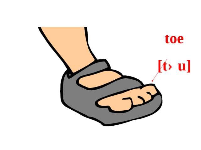 toe [təu]