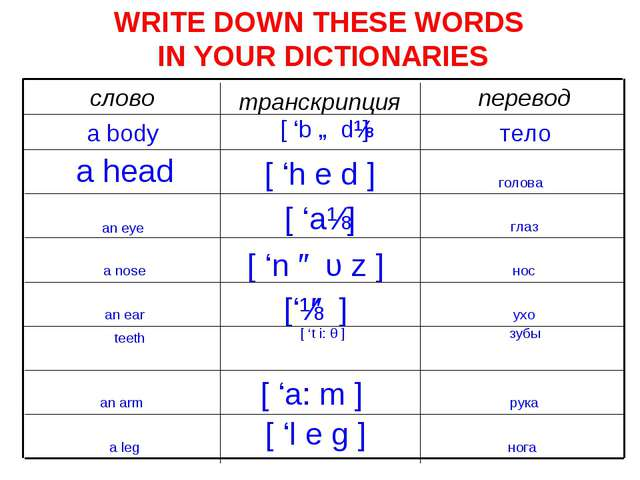 WRITE DOWN THESE WORDS IN YOUR DICTIONARIES перевод транскрипция слово тело [...