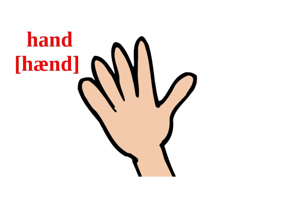 hand [hænd]