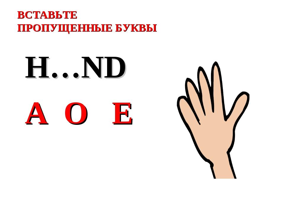 ВСТАВЬТЕ ПРОПУЩЕННЫЕ БУКВЫ H…ND A O E
