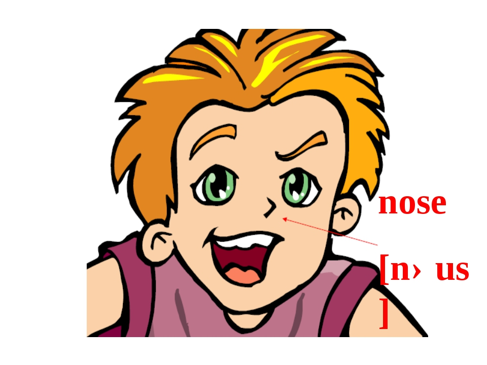 nose [nəus]
