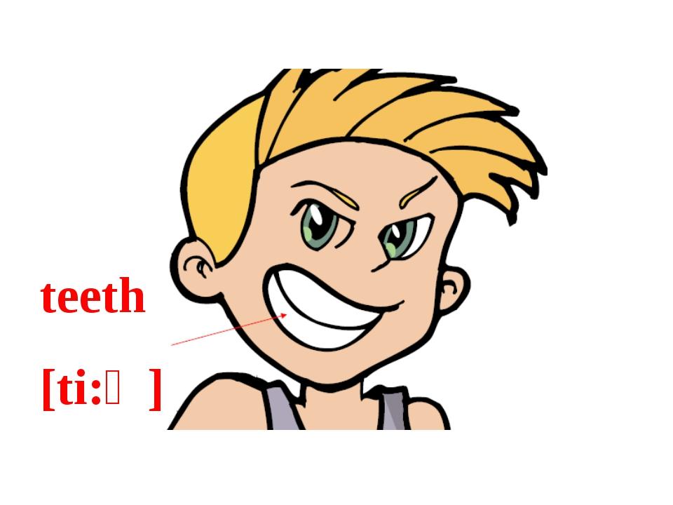 teeth [ti:ϴ]