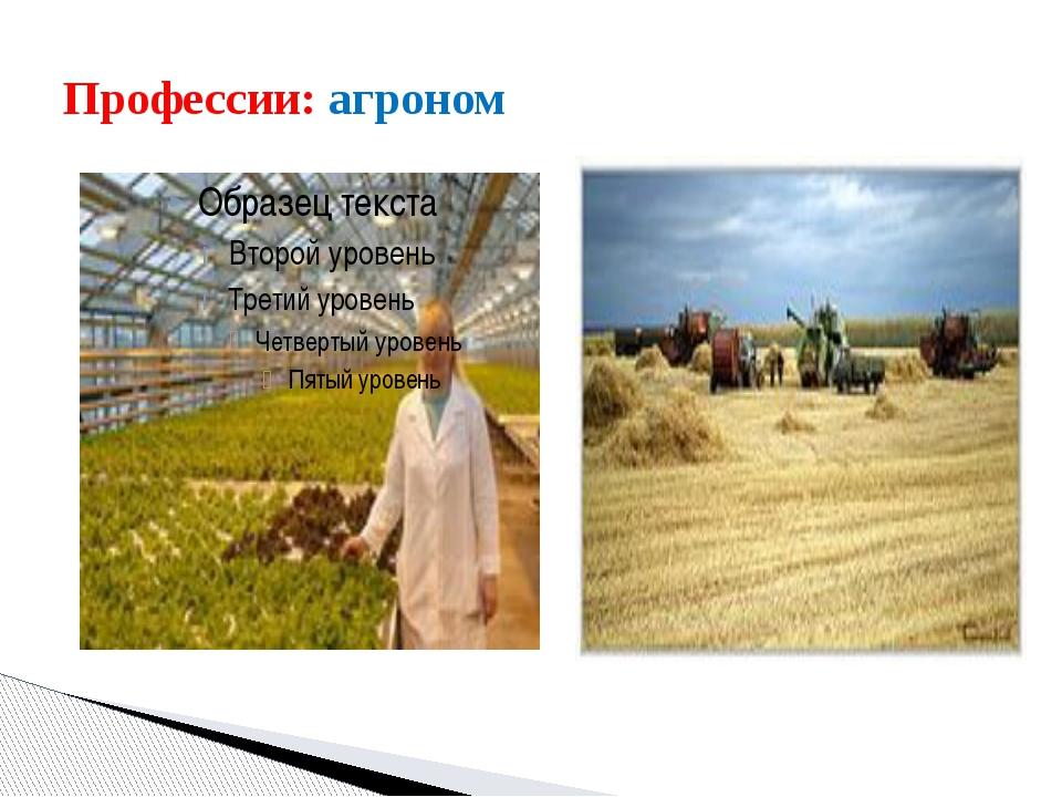 Профессии: агроном