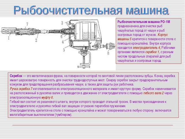 Рыбоочистительная машина РО-1М предназначена для очистки рыб чешуйчатых пород...