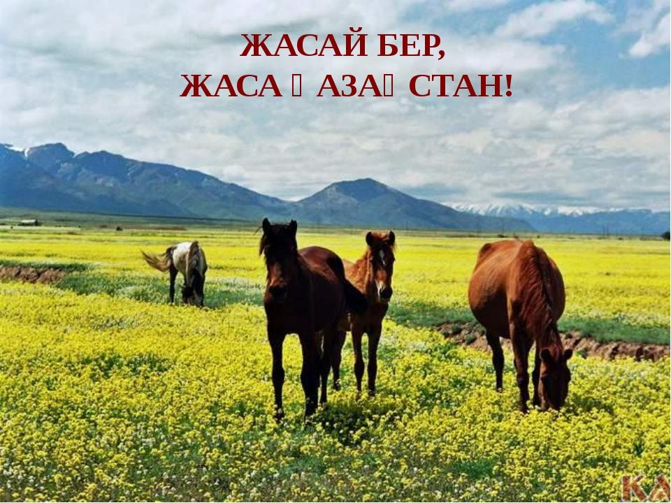 ЖАСАЙ БЕР, ЖАСА ҚАЗАҚСТАН!