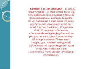 Екібастұз көмір алабының (қоры 10 млрд т ауданы- 155 км2) көмірі тас көмір бо