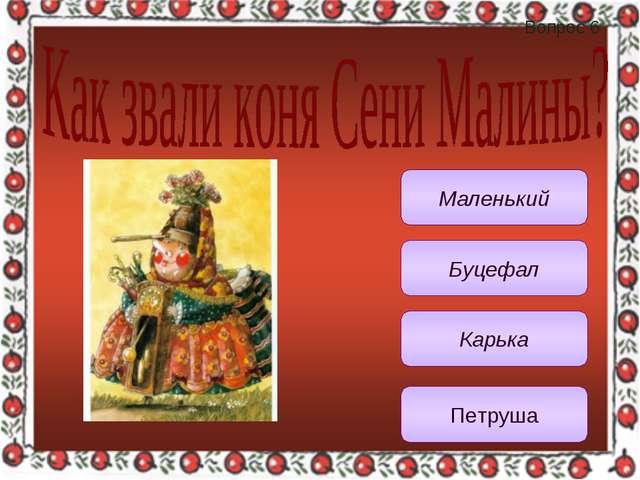 Вопрос 6 Карька Маленький Буцефал Петруша