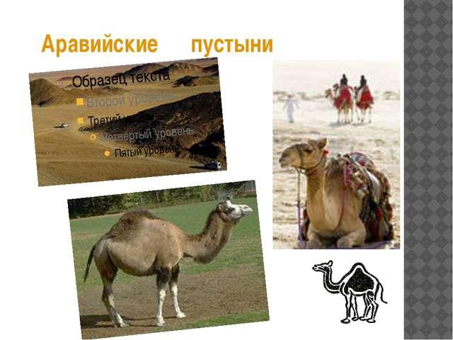 Аравийские пустыни