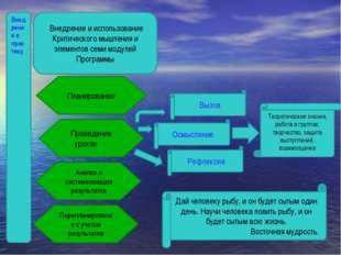 Внедрение в практику Внедрение и использование Критического мышления и элемен