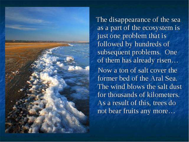 The disappearance of the sea as a part of the ecosystem is just one problem...
