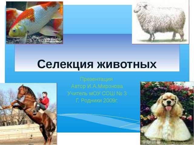 Селекция животных Презентация Автор И.А.Миронова Учитель мОУ СОШ № 3 Г. Родни...