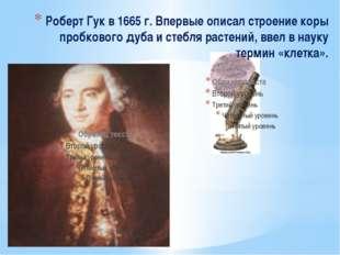 Роберт Гук в 1665 г. Впервые описал строение коры пробкового дуба и стебля р
