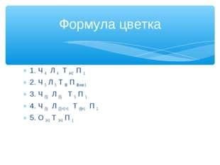 1. Ч 4 Л 4 Т 4+2 П 1 2. Ч 5 Л 5 Т 8 П 8 или 1 3. Ч (5) Л (5) Т 5 П 1 4. Ч (