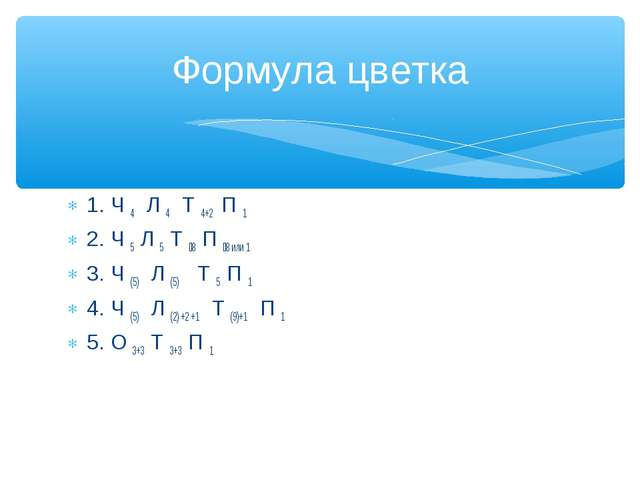 1. Ч 4 Л 4 Т 4+2 П 1 2. Ч 5 Л 5 Т 8 П 8 или 1 3. Ч (5) Л (5) Т 5 П 1 4. Ч (...