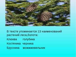 В ТЕКСТЕ УПОМИНАЕТСЯ 13 НАИМЕНОВАНИЙ РАСТЕНИЙ ЛЕСА, БОЛОТА: КЛЮКВА, БРУСНИКА
