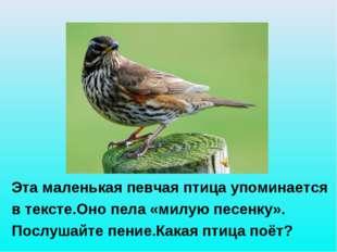 Эта маленькая певчая птица упоминается в тексте.Оно пела «милую песенку». По