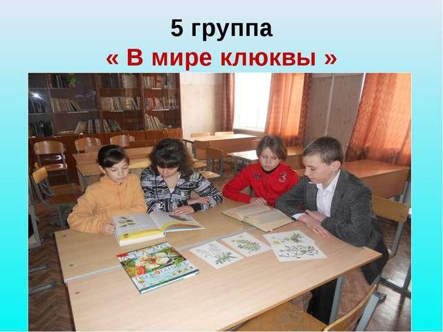 5 группа « В мире клюквы »