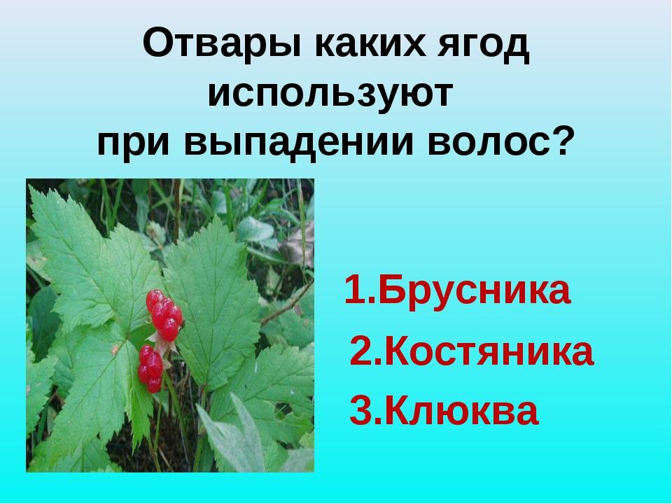 Отвары каких ягод используют при выпадении волос? 1.Брусника 2.Костяника 3.К...