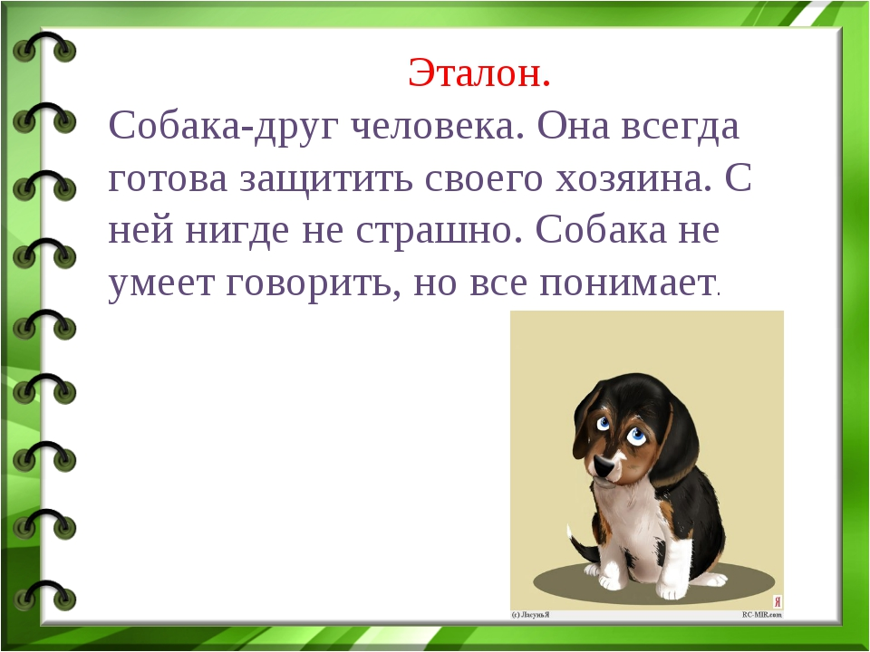 Эталон. Собака-друг человека. Она всегда готова защитить своего хозяина. С н...