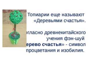 Топиарии еще называют «Деревьями счастья». Согласно древнекитайского учения ф