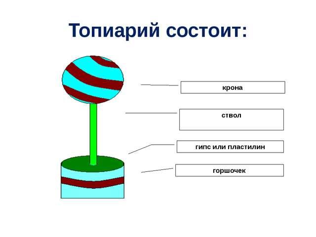Топиарий состоит: крона ствол гипс или пластилин горшочек