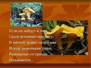 Если их найдут в лесу, Сразу вспомнят про лису. В мягкой травке на опушке Всю