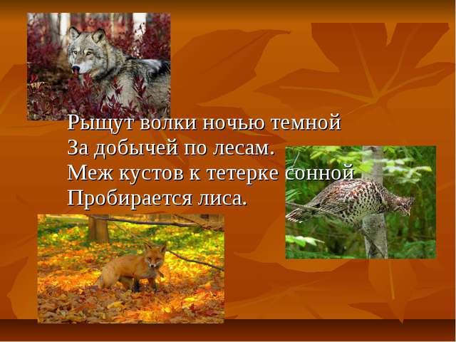Рыщут волки ночью темной За добычей по лесам. Меж кустов к тетерке сонной...