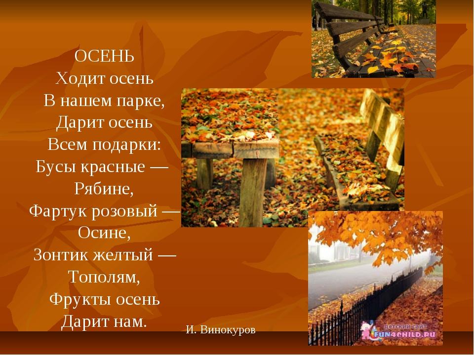 ОСЕНЬ Ходит осень В нашем парке, Дарит осень Всем подарки: Бусы красные —...