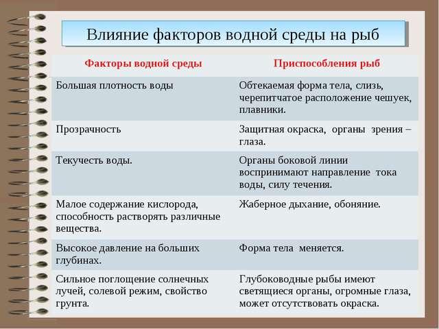 Влияние факторов водной среды на рыб Факторы водной средыПриспособления рыб...
