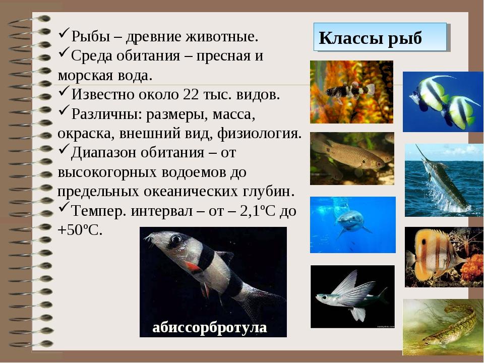 Классы рыб Рыбы – древние животные. Среда обитания – пресная и морская вода....