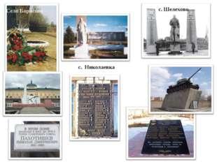 Село Борисово с. Шелехово с. Николаевка