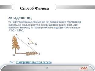 Способ Фалеса AB : А1В1 = BC : В1С1 т.е. высота дерева во столько же раз боль