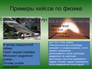 Примеры кейсов по физике И между водорослей гибких Горит чешуек серебро Мель
