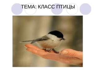 ТЕМА: КЛАСС ПТИЦЫ