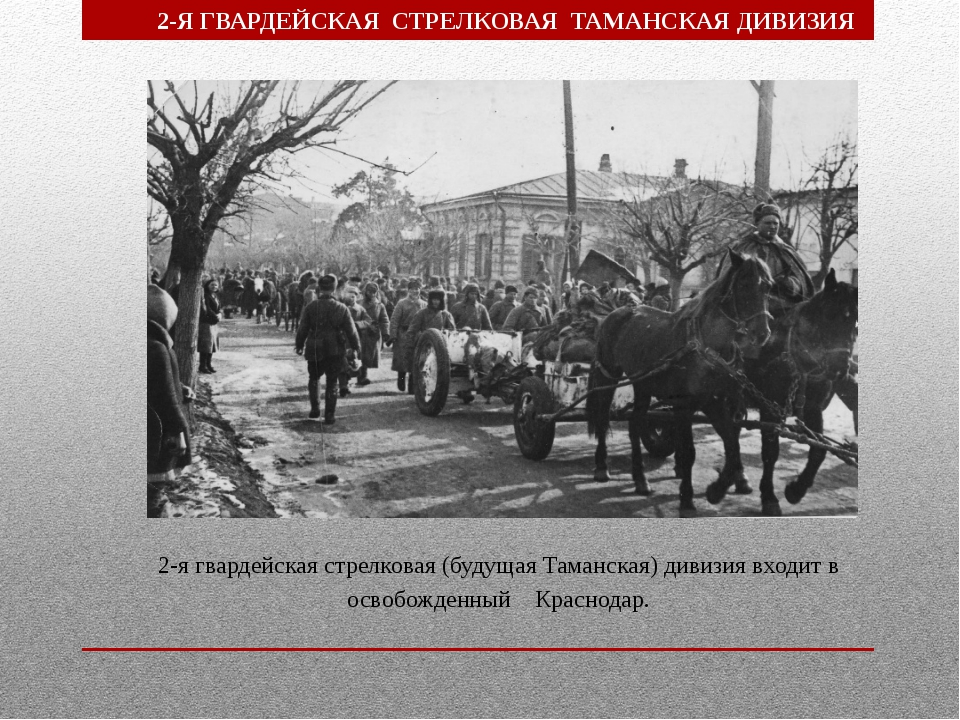 2-я гвардейская стрелковая (будущая Таманская) дивизия входит в освобожденный...
