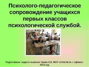 Психолого-педагогическое сопровождение учащихся первых классов психологическо