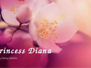 Princess Diana by Cherry Gilchrist